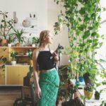 Biophili Design: Bringing Nature Indoors