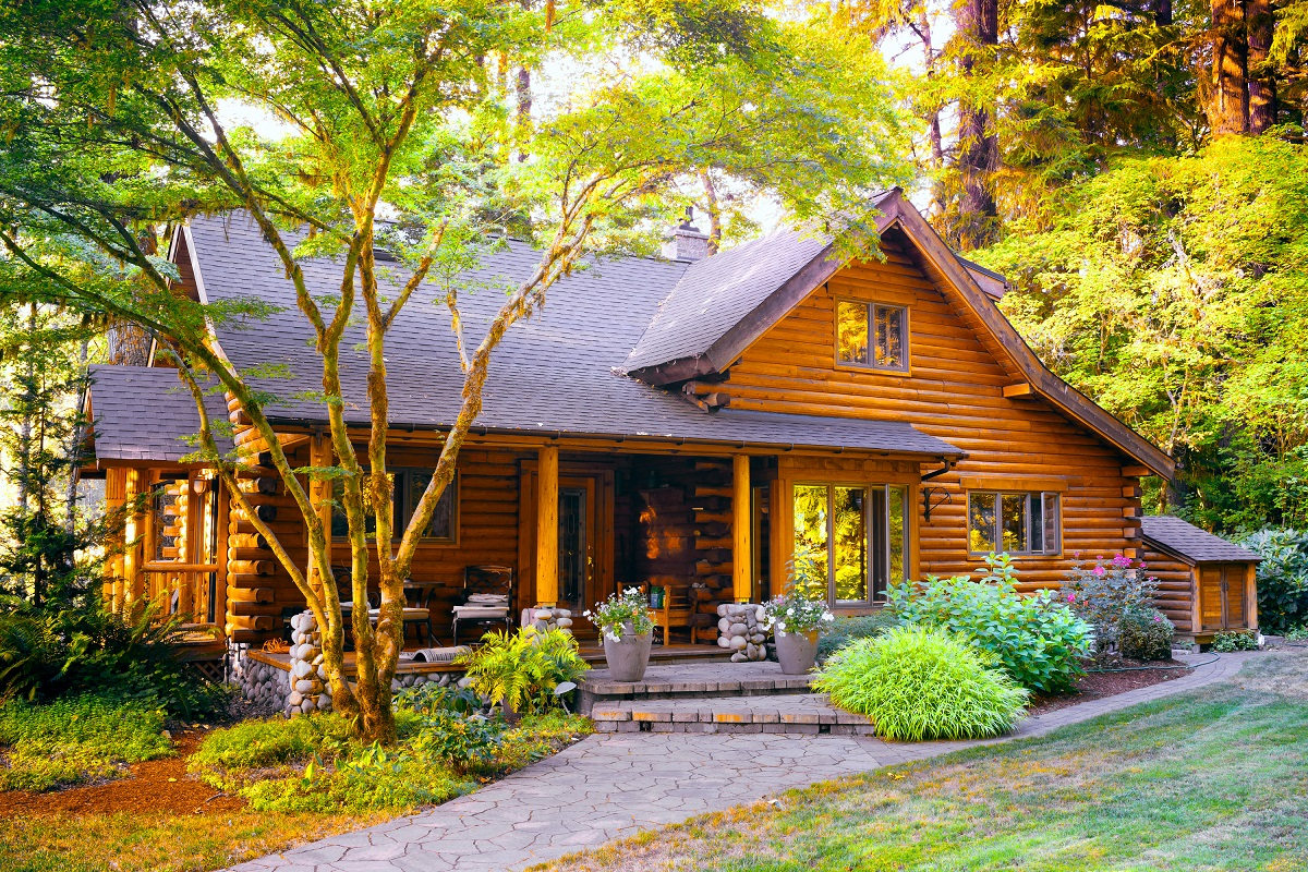 wooden home at the forest